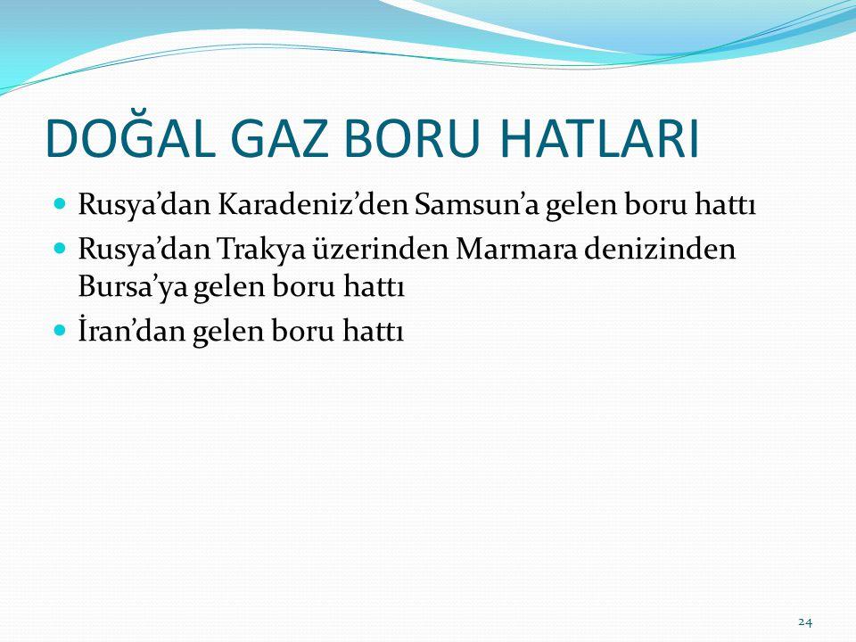 DOĞAL GAZ BORU HATLARI Rusya'dan Karadeniz'den Samsun'a gelen boru hattı. Rusya'dan Trakya üzerinden Marmara denizinden Bursa'ya gelen boru hattı.