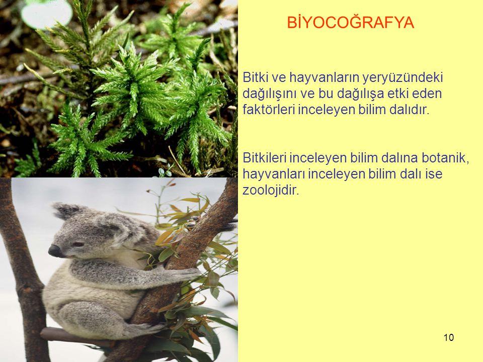 BİYOCOĞRAFYA Bitki ve hayvanların yeryüzündeki dağılışını ve bu dağılışa etki eden faktörleri inceleyen bilim dalıdır.