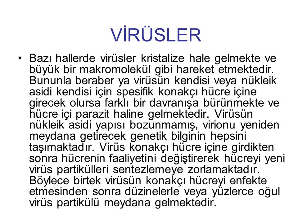 VİRÜSLER