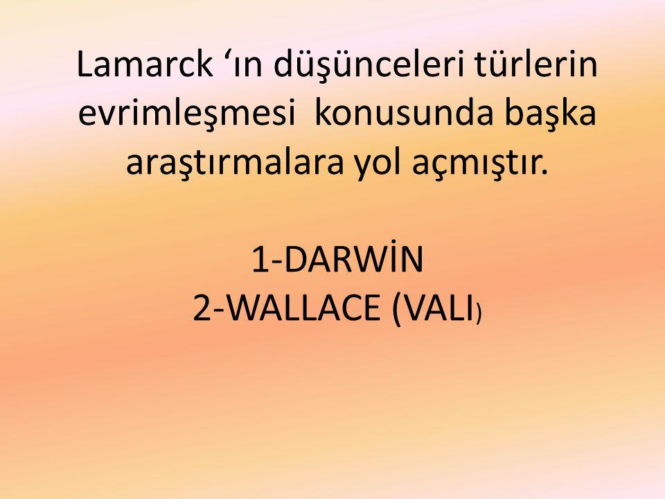 Lamarck 'ın düşünceleri türlerin evrimleşmesi konusunda başka araştırmalara yol açmıştır.