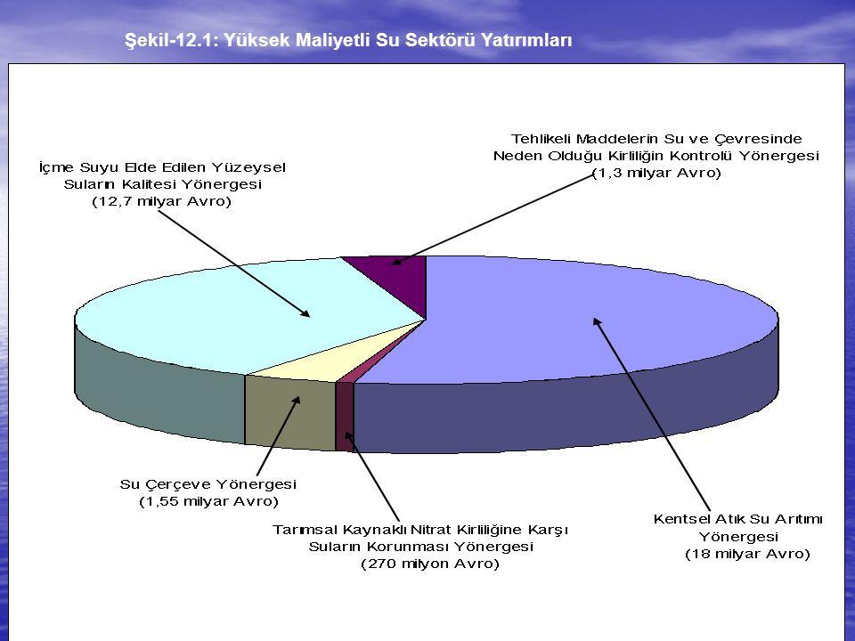 Şekil-12.1: Yüksek Maliyetli Su Sektörü Yatırımları