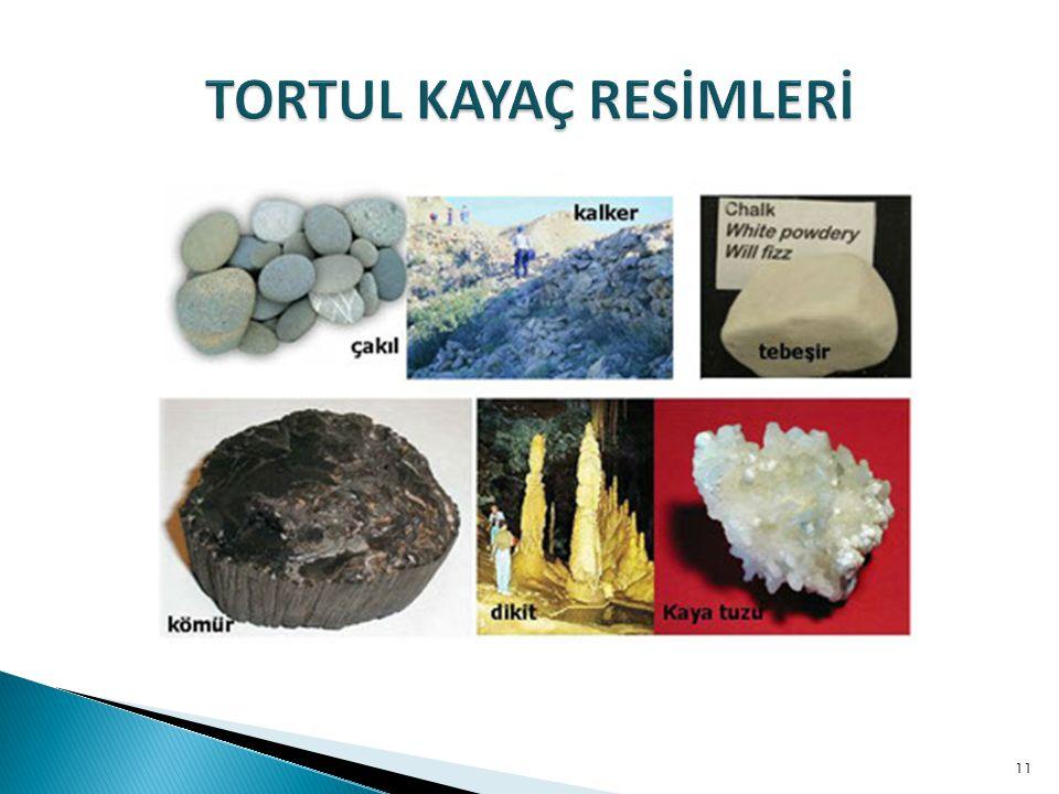 TORTUL KAYAÇ RESİMLERİ