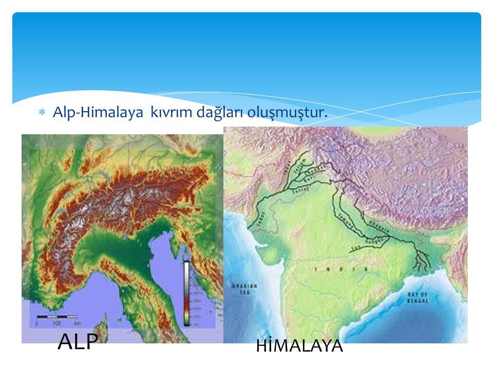 Alp-Himalaya kıvrım dağları oluşmuştur.