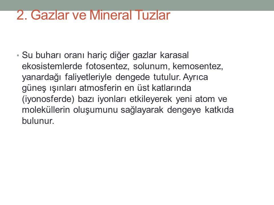 2. Gazlar ve Mineral Tuzlar