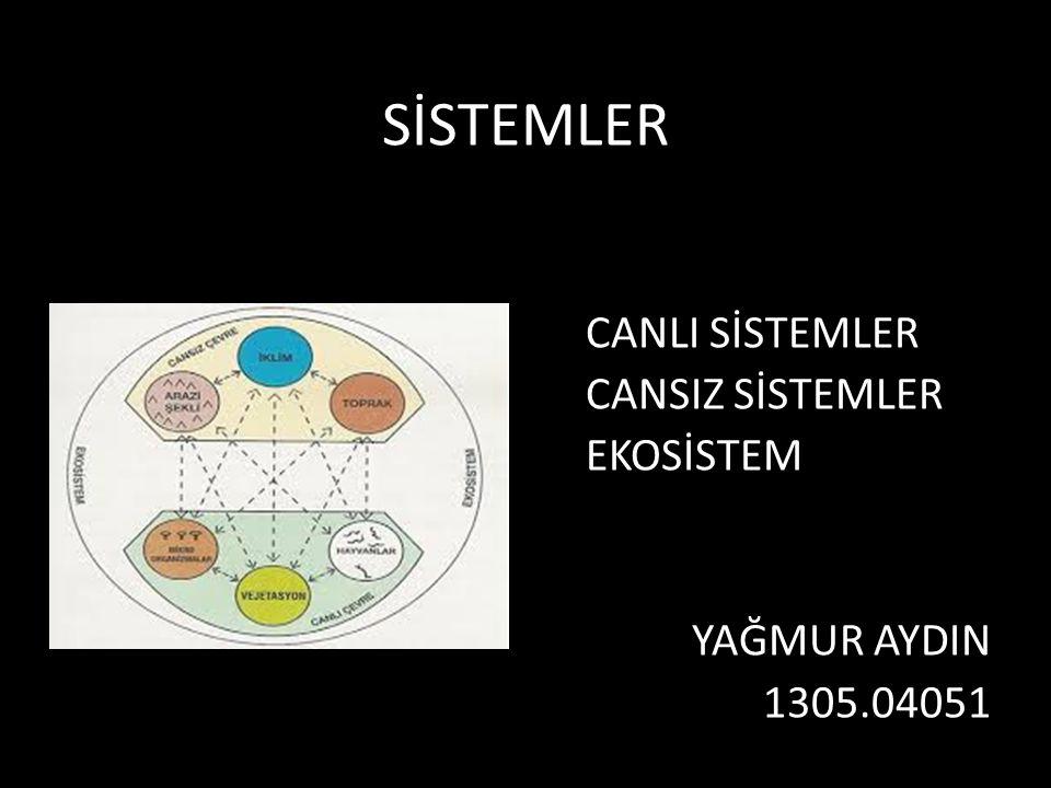 CANLI SİSTEMLER CANSIZ SİSTEMLER EKOSİSTEM YAĞMUR AYDIN 1305.04051