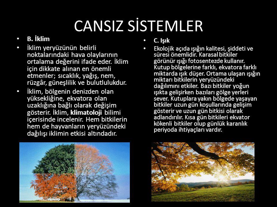 CANSIZ SİSTEMLER B. İklim