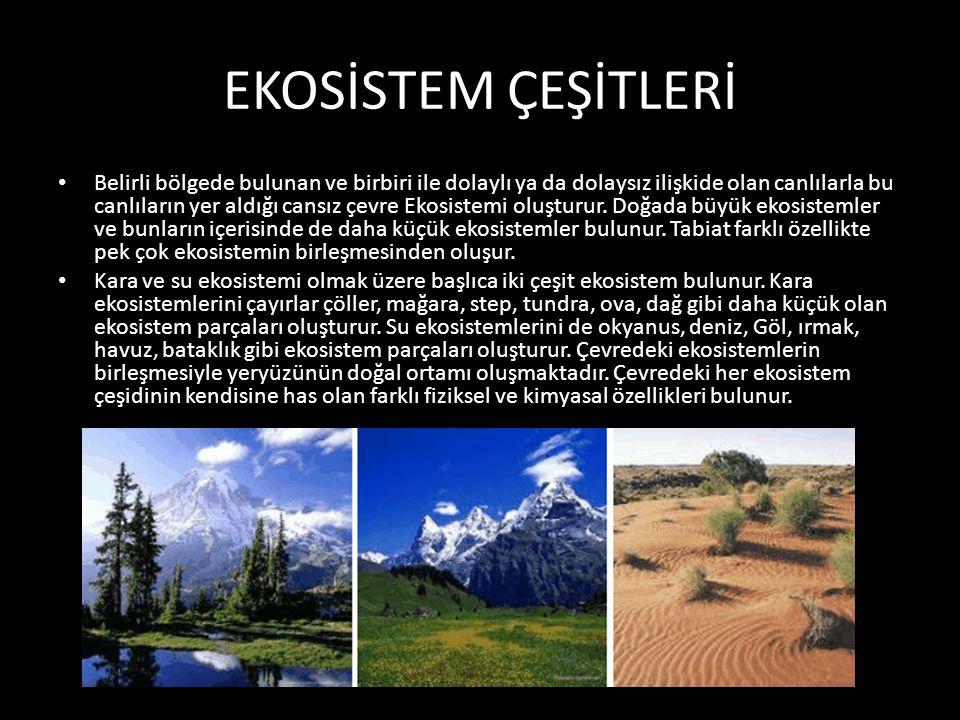 EKOSİSTEM ÇEŞİTLERİ