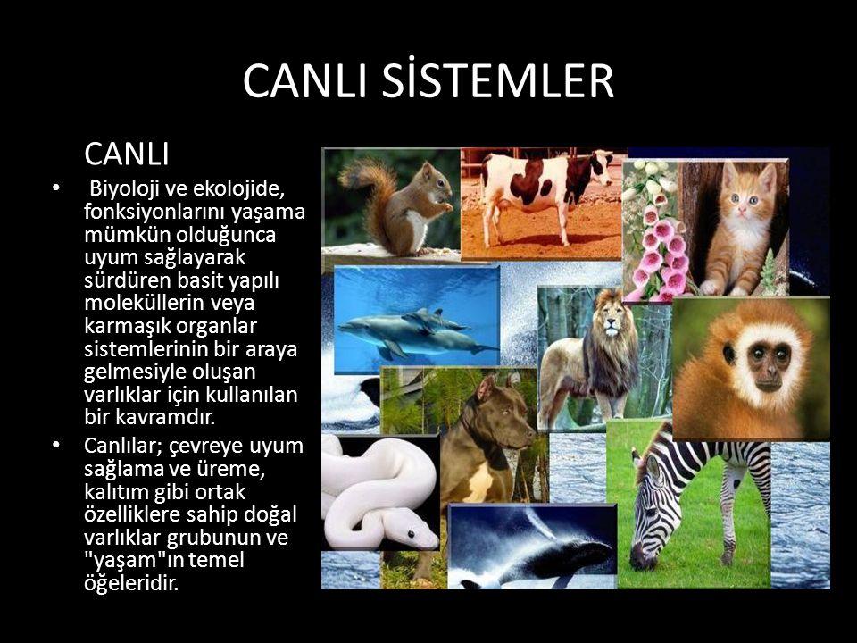 CANLI SİSTEMLER CANLI.
