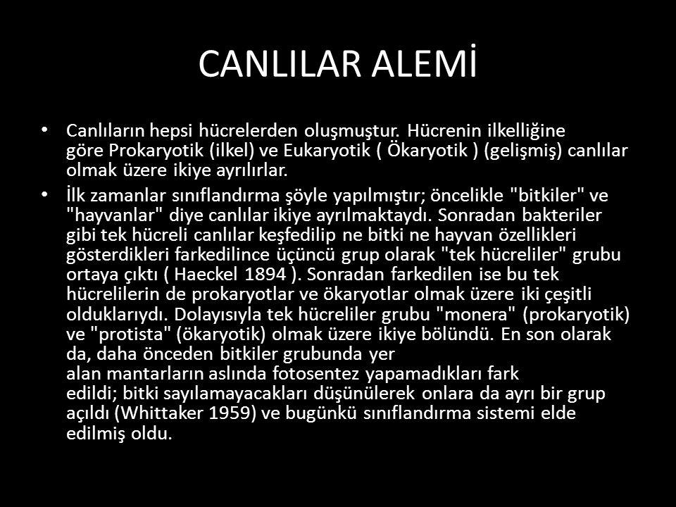 CANLILAR ALEMİ