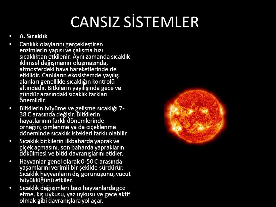 CANSIZ SİSTEMLER A. Sıcaklık