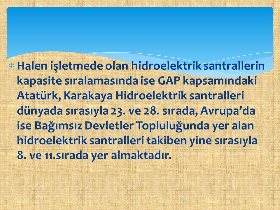 Halen işletmede olan hidroelektrik santrallerin kapasite sıralamasında ise GAP kapsamındaki Atatürk, Karakaya Hidroelektrik santralleri dünyada sırasıyla 23.