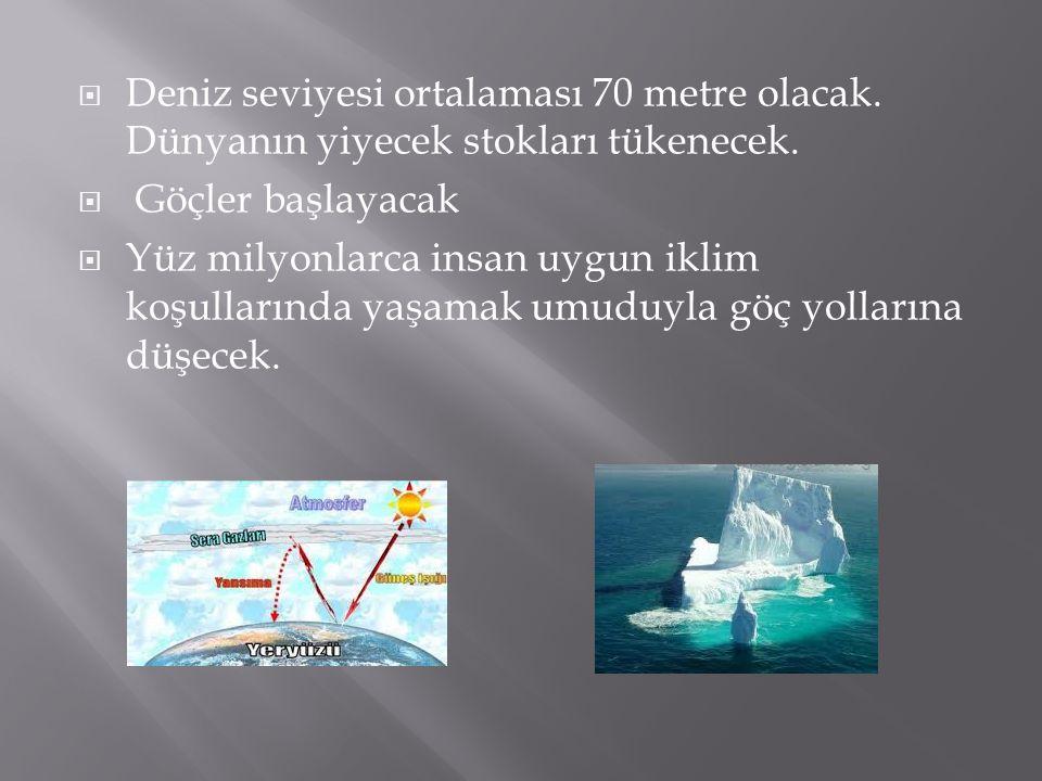 Deniz seviyesi ortalaması 70 metre olacak