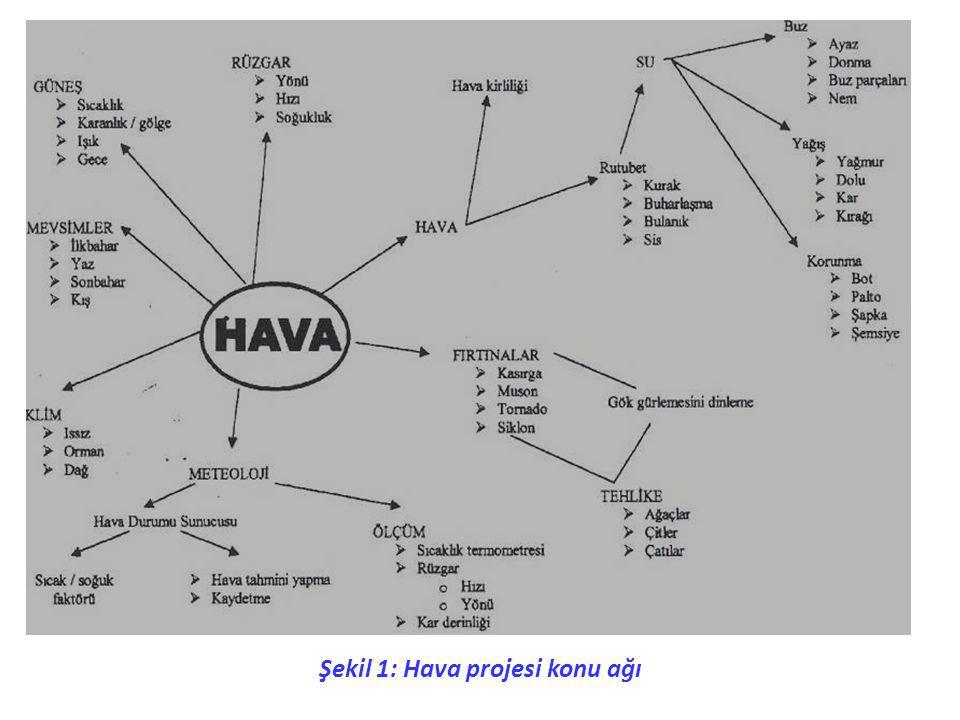 Şekil 1: Hava projesi konu ağı
