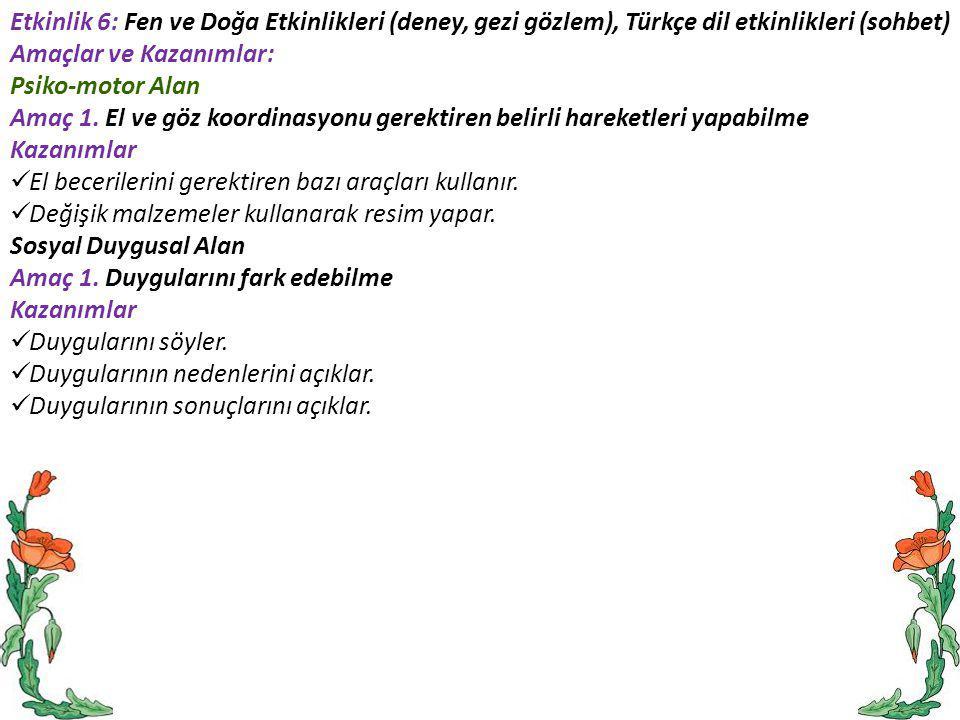 Etkinlik 6: Fen ve Doğa Etkinlikleri (deney, gezi gözlem), Türkçe dil etkinlikleri (sohbet)