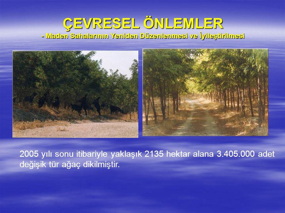 ÇEVRESEL ÖNLEMLER - Maden Sahalarının Yeniden Düzenlenmesi ve İyileştirilmesi