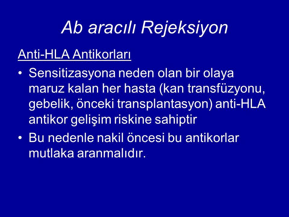 Ab aracılı Rejeksiyon Anti-HLA Antikorları