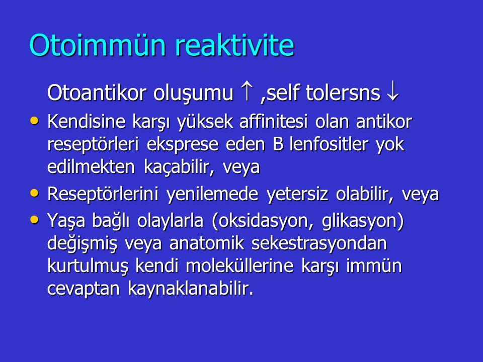 Otoimmün reaktivite Otoantikor oluşumu  ,self tolersns 