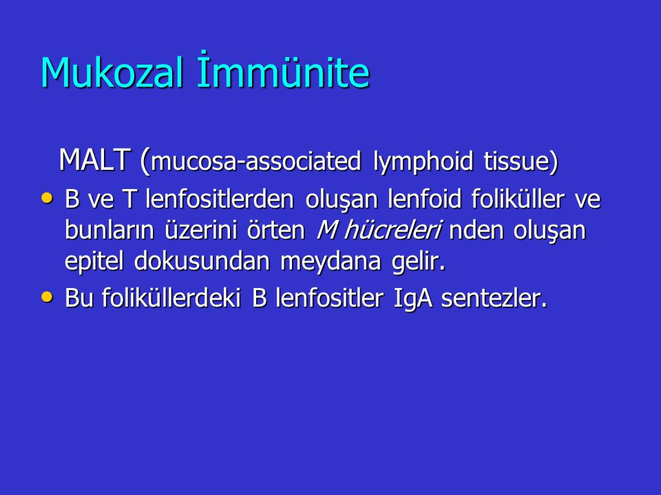 Mukozal İmmünite MALT (mucosa-associated lymphoid tissue)