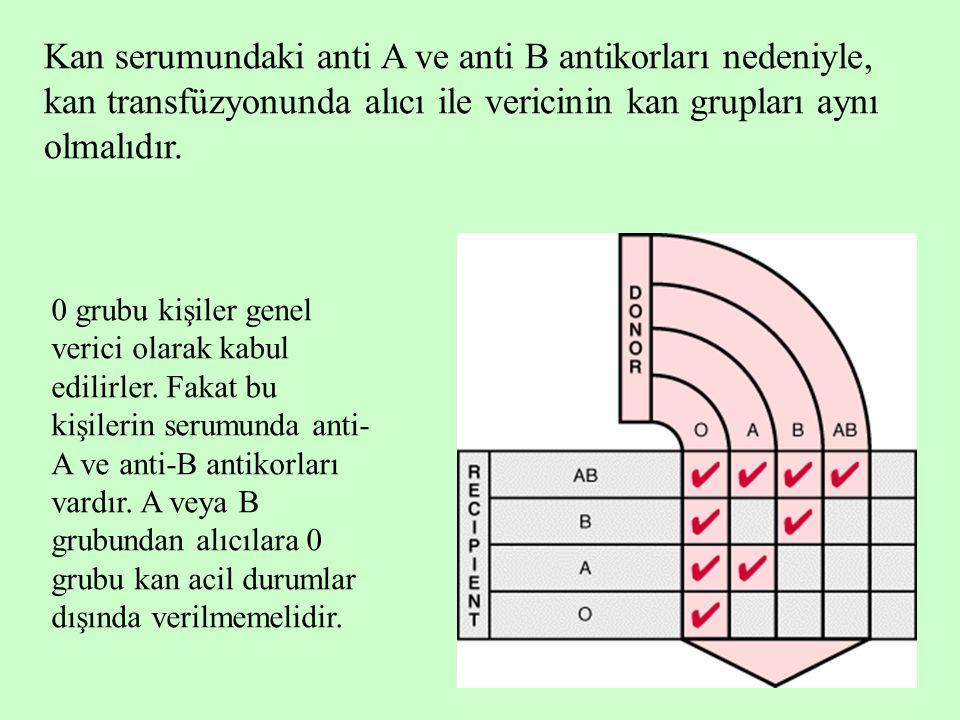 Kan serumundaki anti A ve anti B antikorları nedeniyle, kan transfüzyonunda alıcı ile vericinin kan grupları aynı olmalıdır.