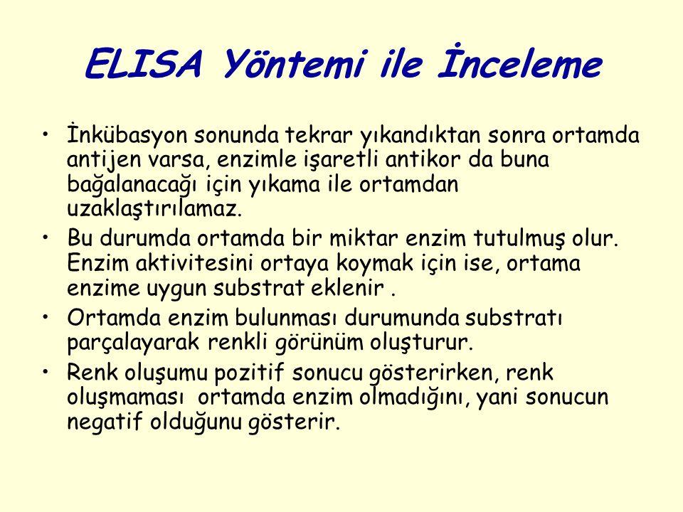 ELISA Yöntemi ile İnceleme