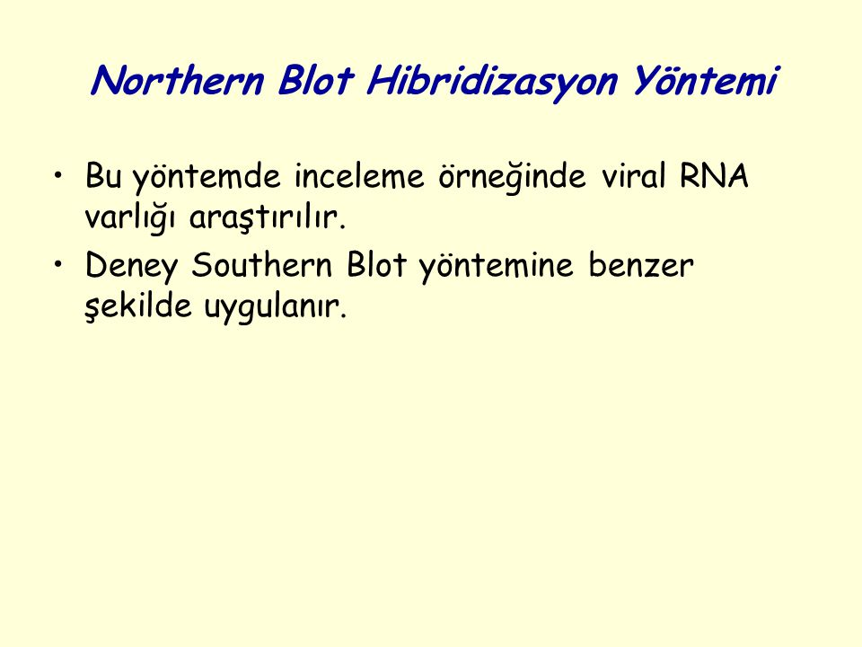 Northern Blot Hibridizasyon Yöntemi