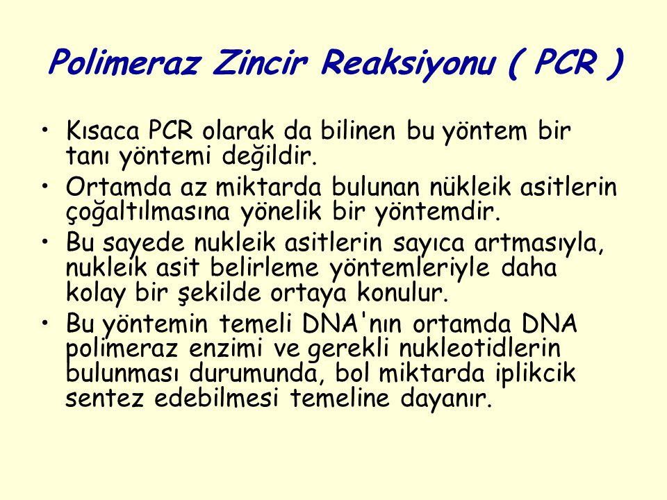 Polimeraz Zincir Reaksiyonu ( PCR )