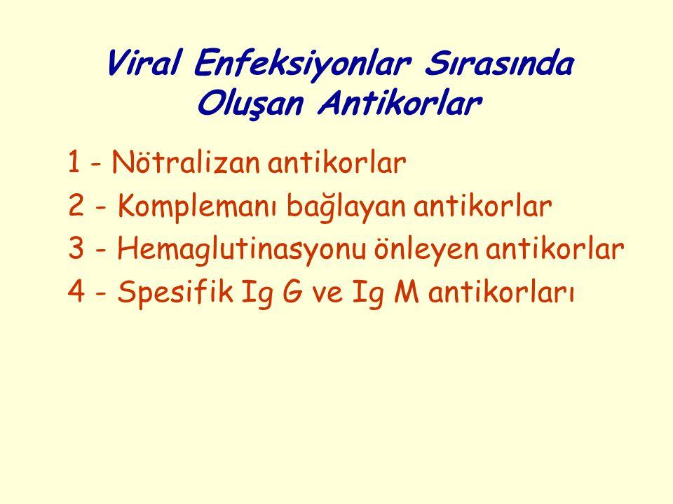 Viral Enfeksiyonlar Sırasında Oluşan Antikorlar