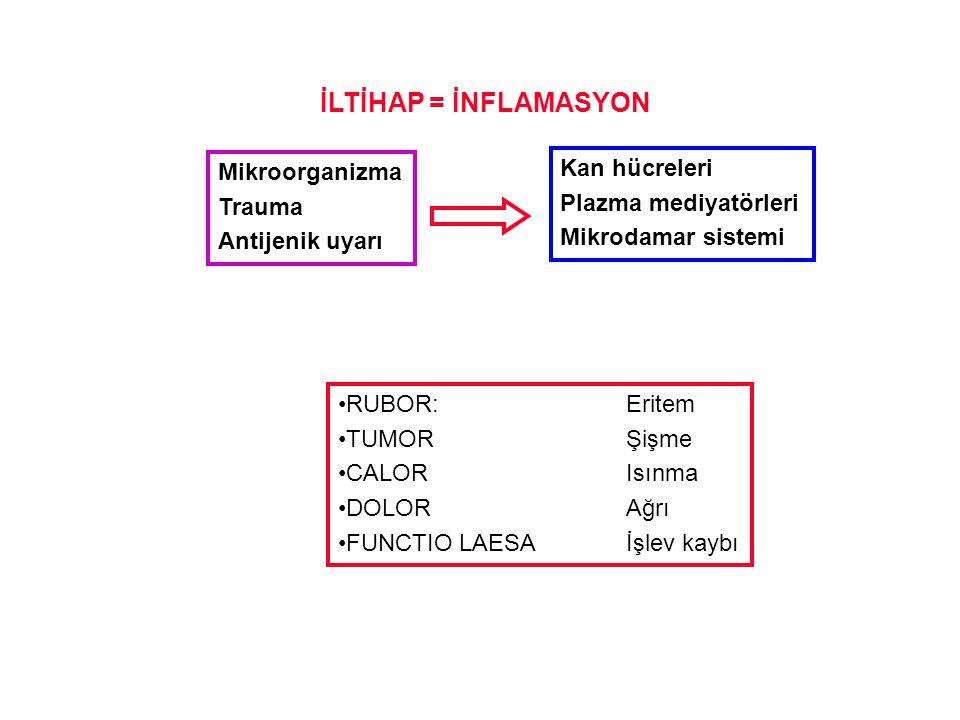 İLTİHAP = İNFLAMASYON Kan hücreleri Mikroorganizma