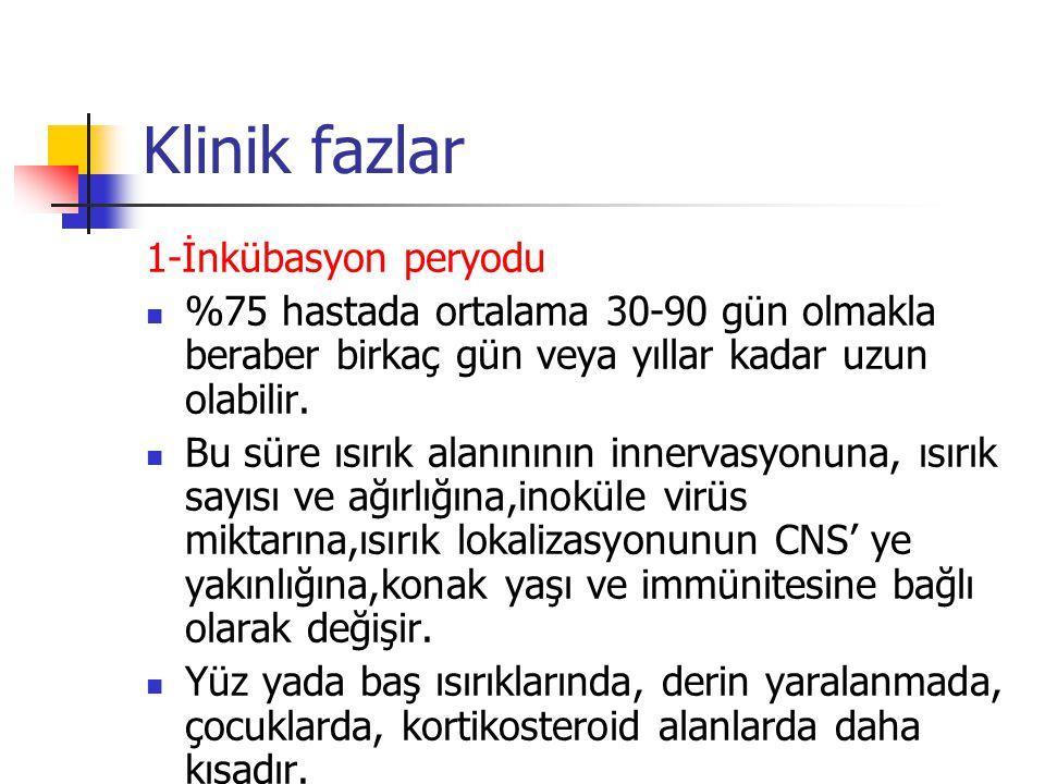 Klinik fazlar 1-İnkübasyon peryodu