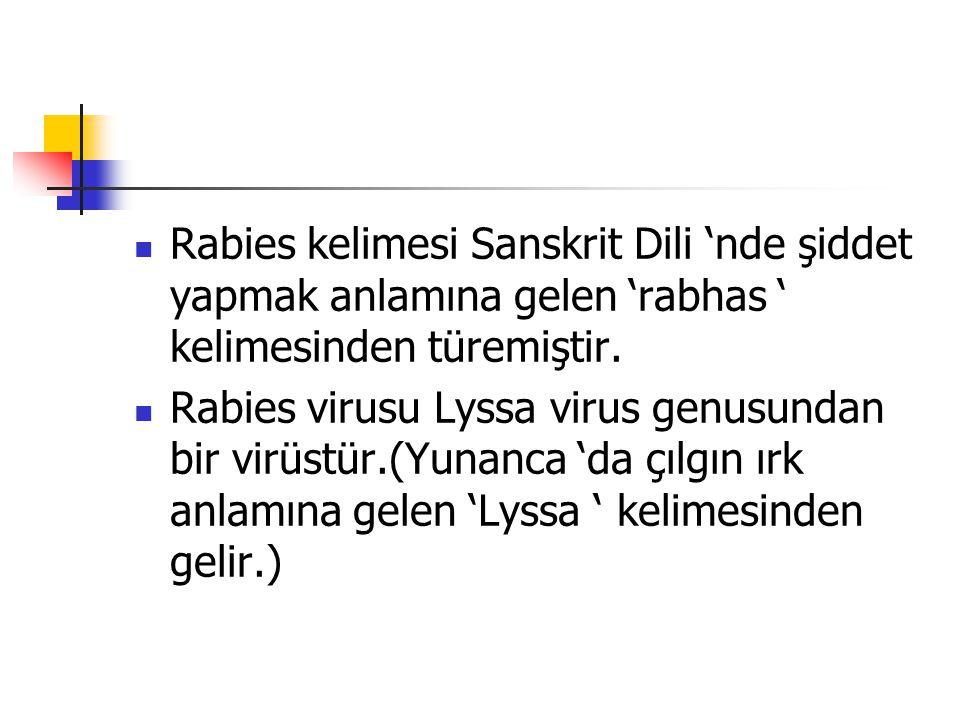 Rabies kelimesi Sanskrit Dili 'nde şiddet yapmak anlamına gelen 'rabhas ' kelimesinden türemiştir.