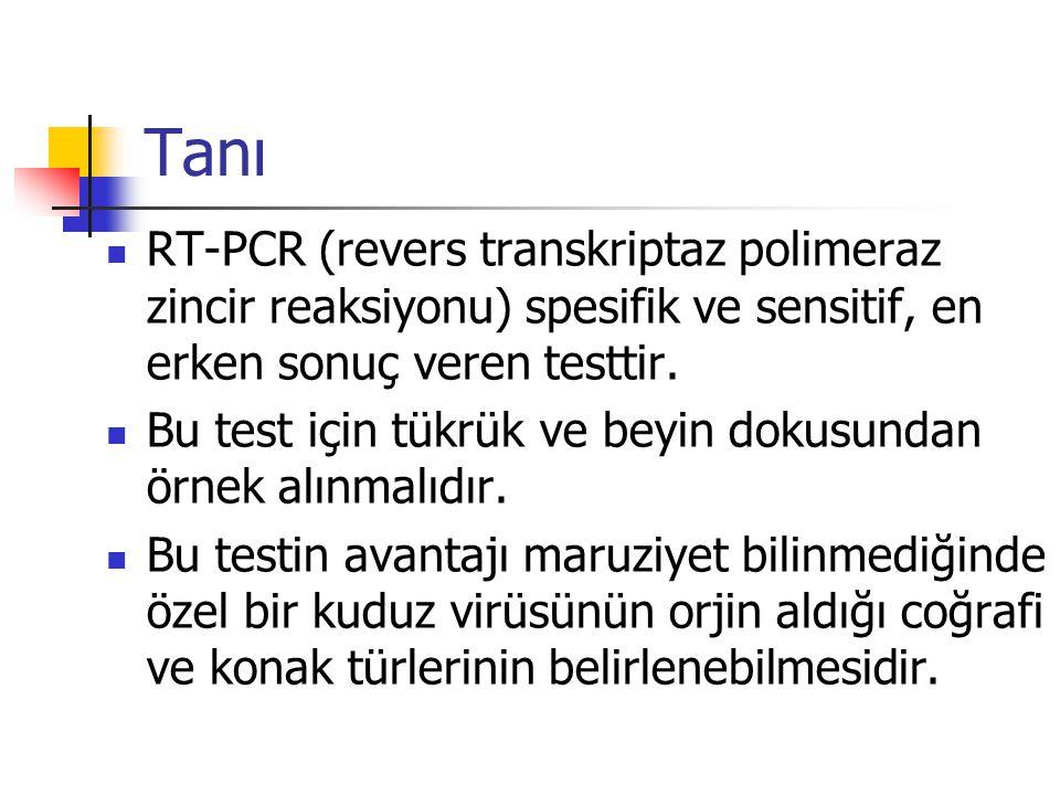 Tanı RT-PCR (revers transkriptaz polimeraz zincir reaksiyonu) spesifik ve sensitif, en erken sonuç veren testtir.