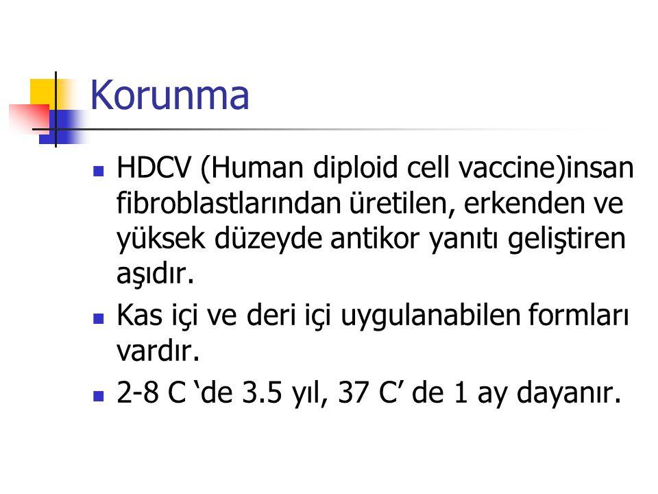 Korunma HDCV (Human diploid cell vaccine)insan fibroblastlarından üretilen, erkenden ve yüksek düzeyde antikor yanıtı geliştiren aşıdır.