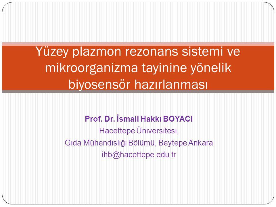 Prof. Dr. İsmail Hakkı BOYACI