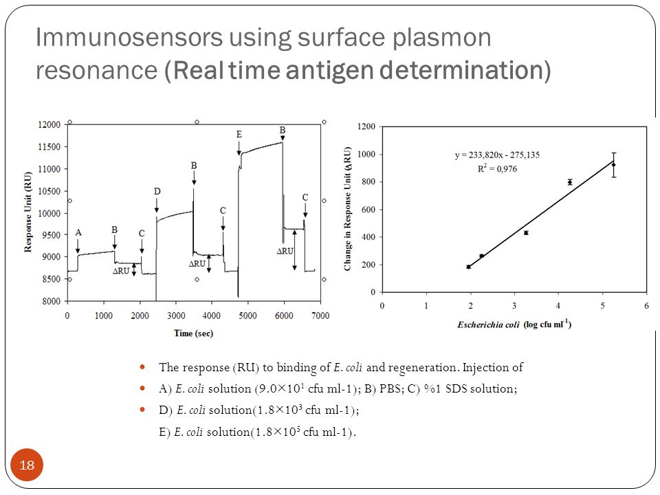 Immunosensors using surface plasmon resonance (Real time antigen determination)