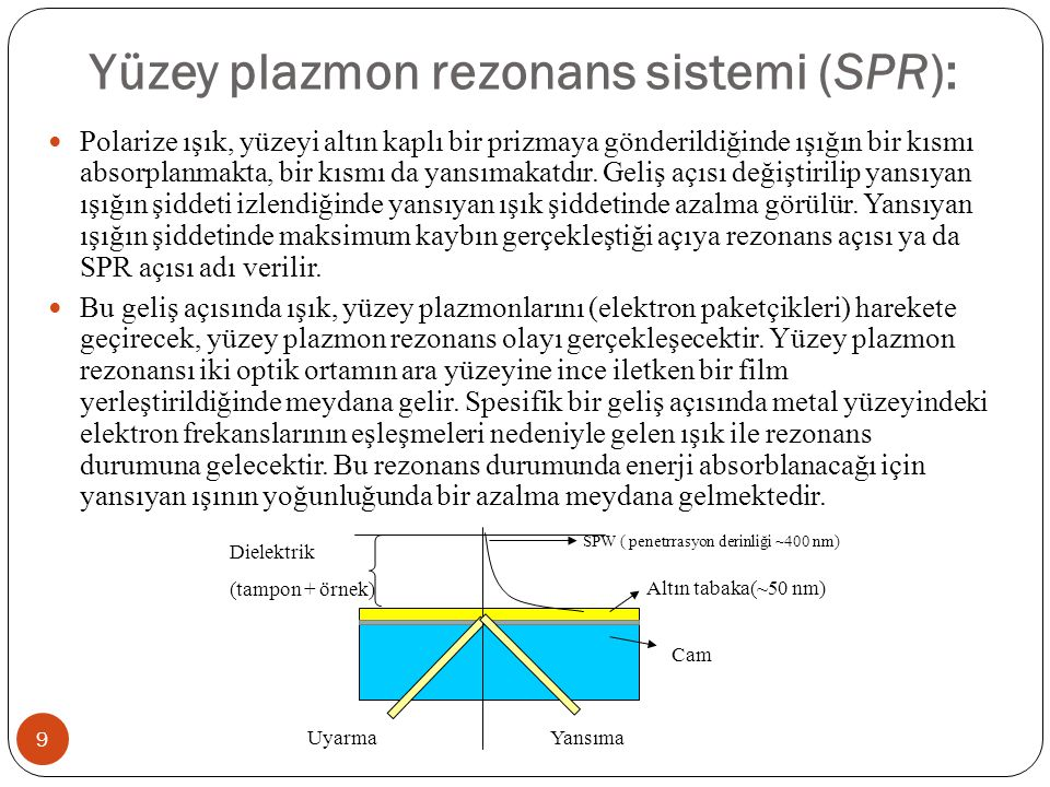 Yüzey plazmon rezonans sistemi (SPR):