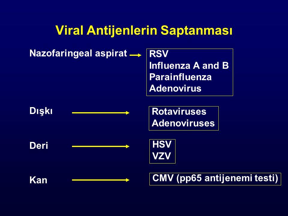 Viral Antijenlerin Saptanması