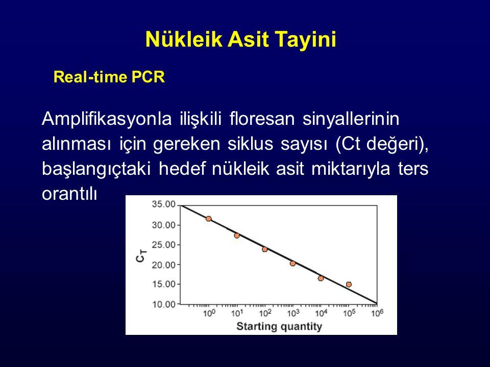 Nükleik Asit Tayini Amplifikasyonla ilişkili floresan sinyallerinin
