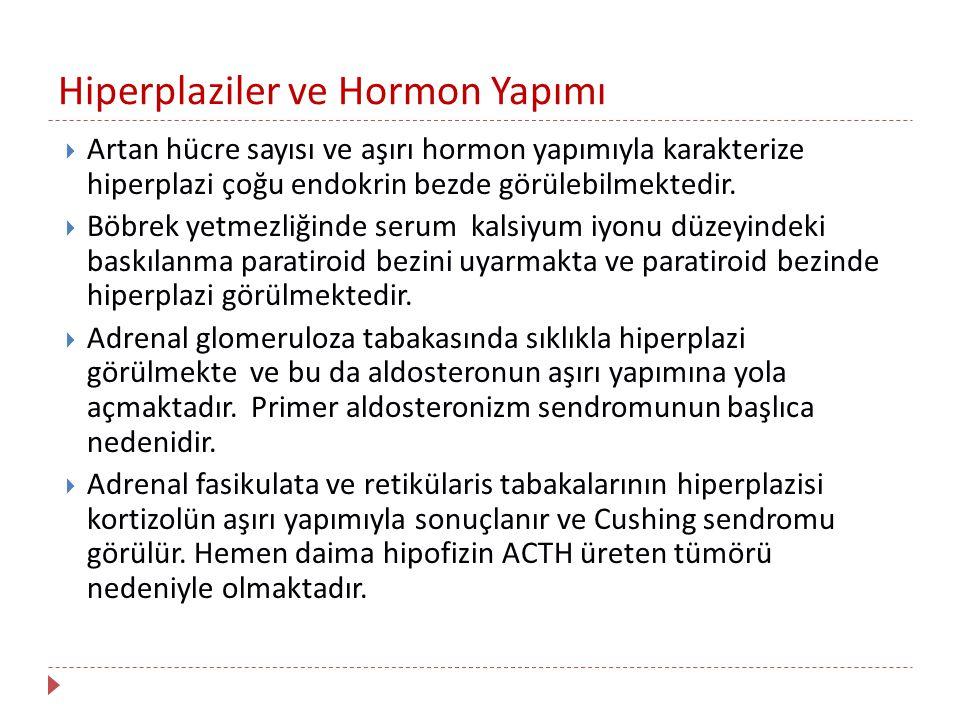 Hiperplaziler ve Hormon Yapımı