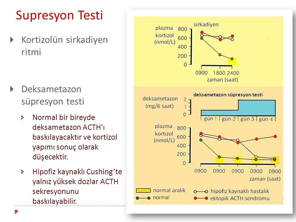 Supresyon Testi Kortizolün sirkadiyen ritmi