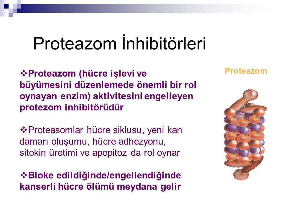 Proteazom İnhibitörleri