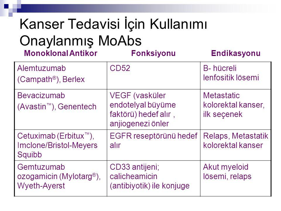 Kanser Tedavisi İçin Kullanımı Onaylanmış MoAbs