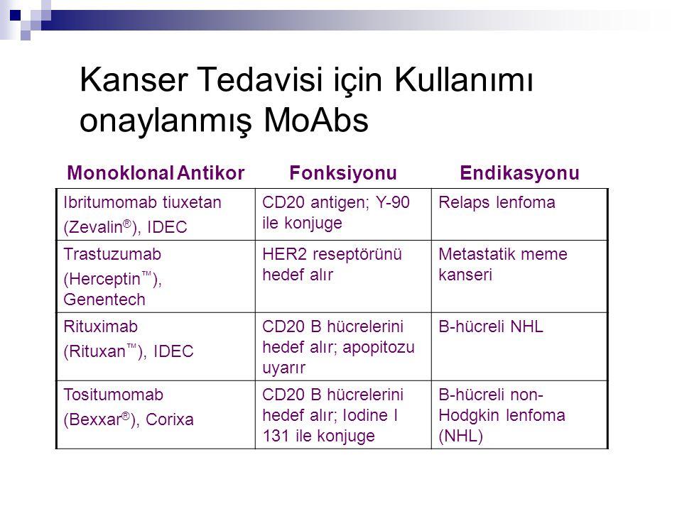 Kanser Tedavisi için Kullanımı onaylanmış MoAbs