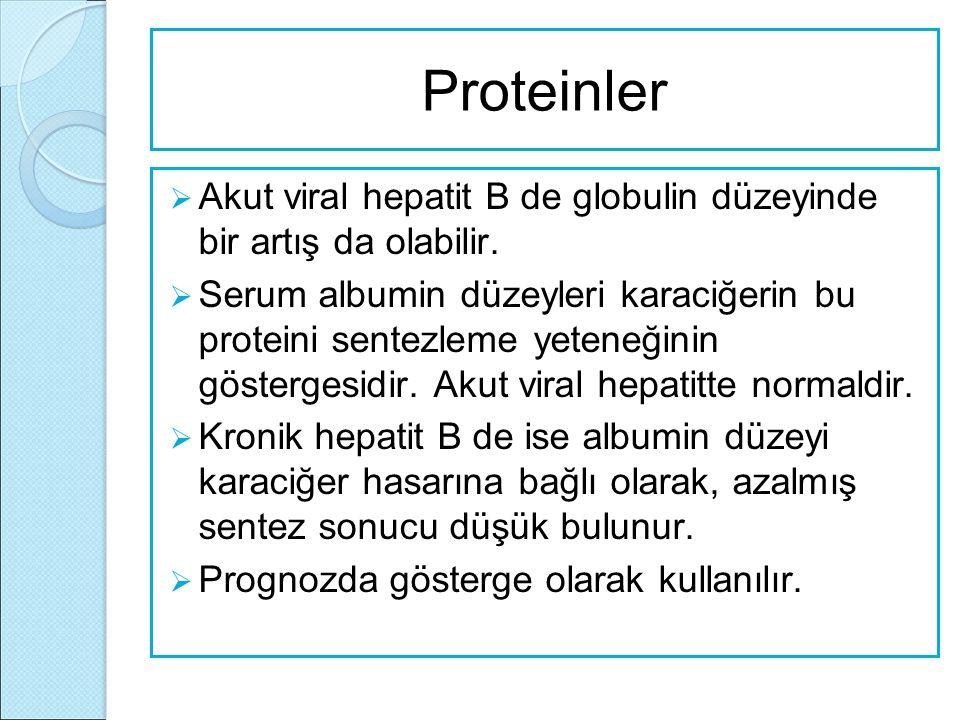 Proteinler Akut viral hepatit B de globulin düzeyinde bir artış da olabilir.