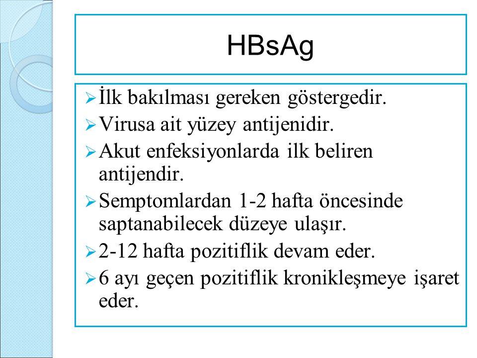 HBsAg İlk bakılması gereken göstergedir. Virusa ait yüzey antijenidir.
