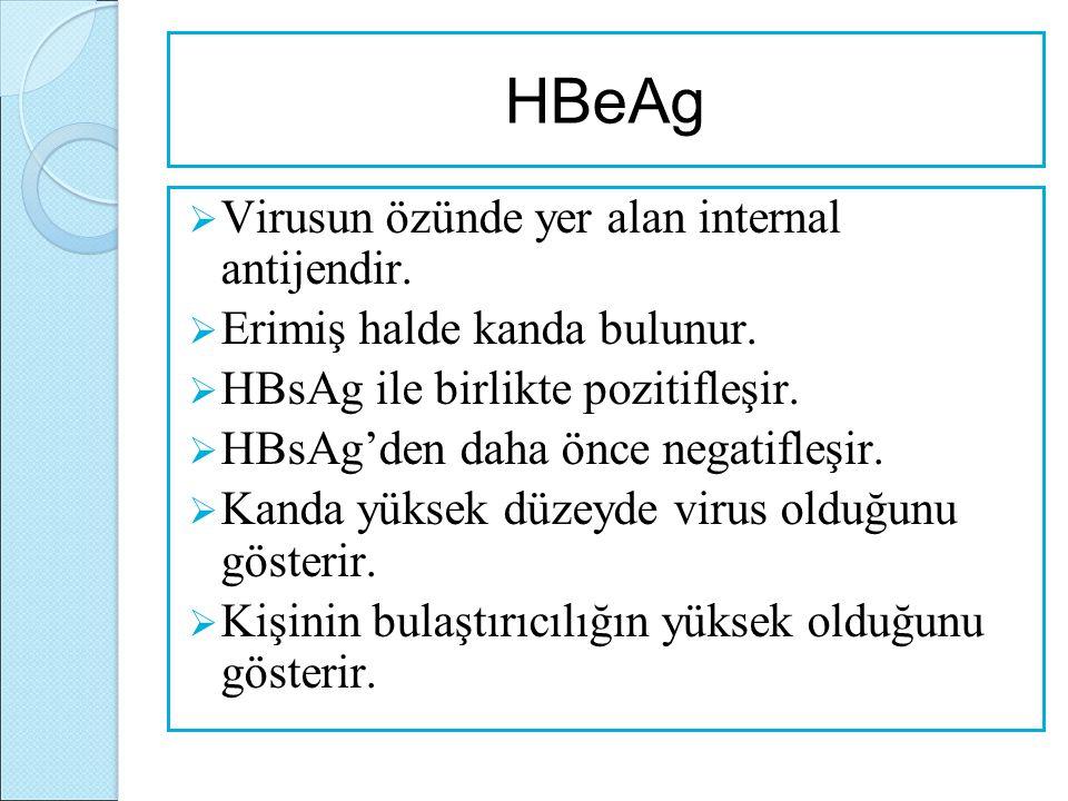 HBeAg Virusun özünde yer alan internal antijendir.