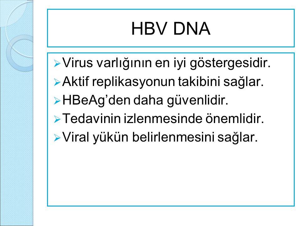 HBV DNA Virus varlığının en iyi göstergesidir.