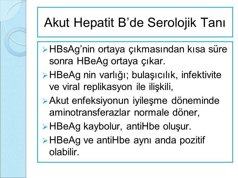Akut Hepatit B'de Serolojik Tanı