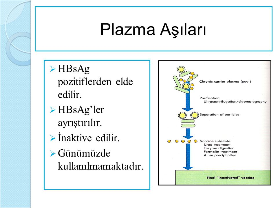 Plazma Aşıları HBsAg pozitiflerden elde edilir.