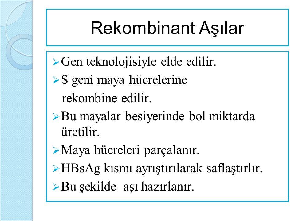 Rekombinant Aşılar Gen teknolojisiyle elde edilir.