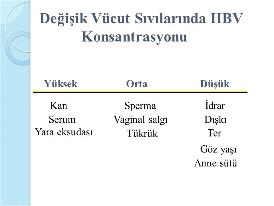 Değişik Vücut Sıvılarında HBV Konsantrasyonu